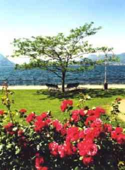 Lago Maggiore - Stresa - Lungolago