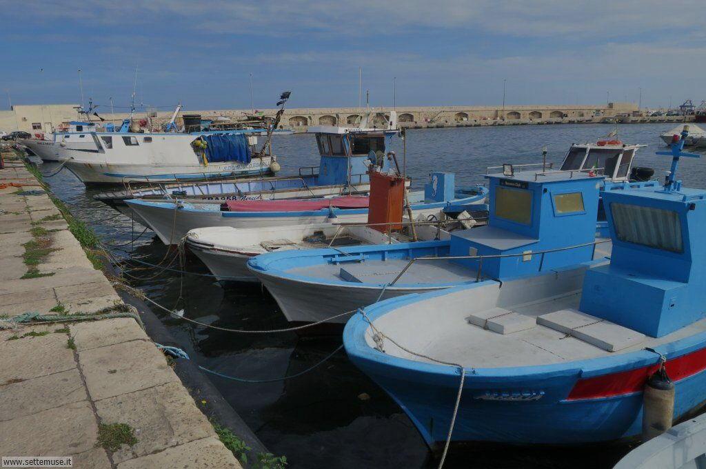 mola-di-bari-318