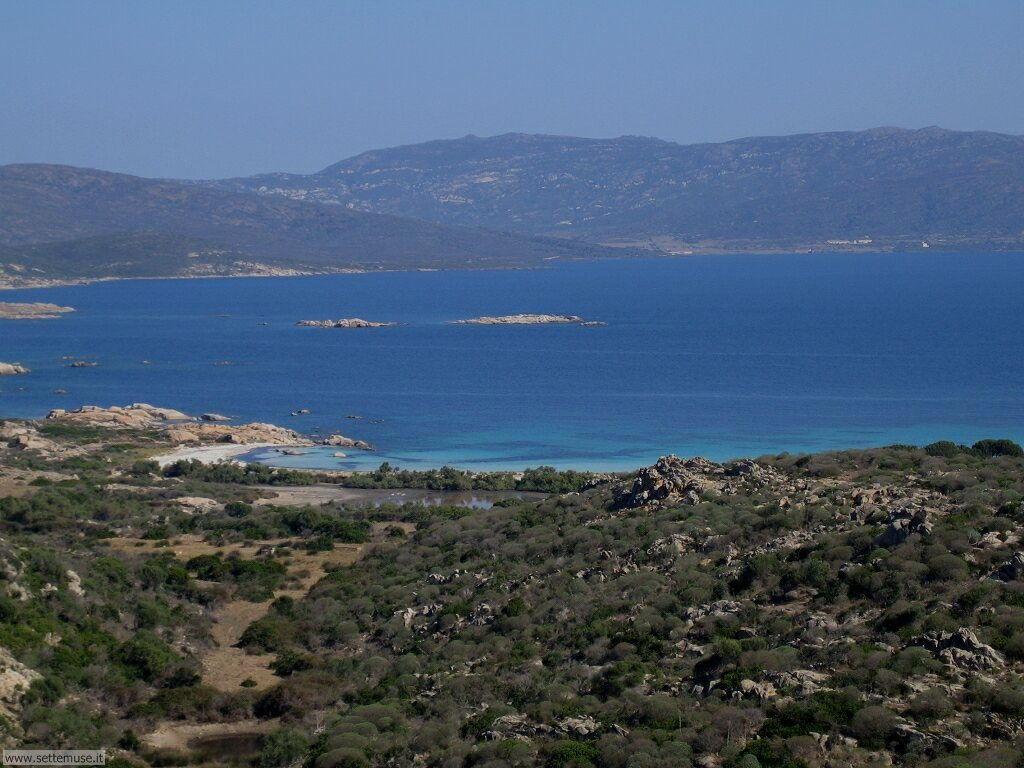 Isola Asinara 001
