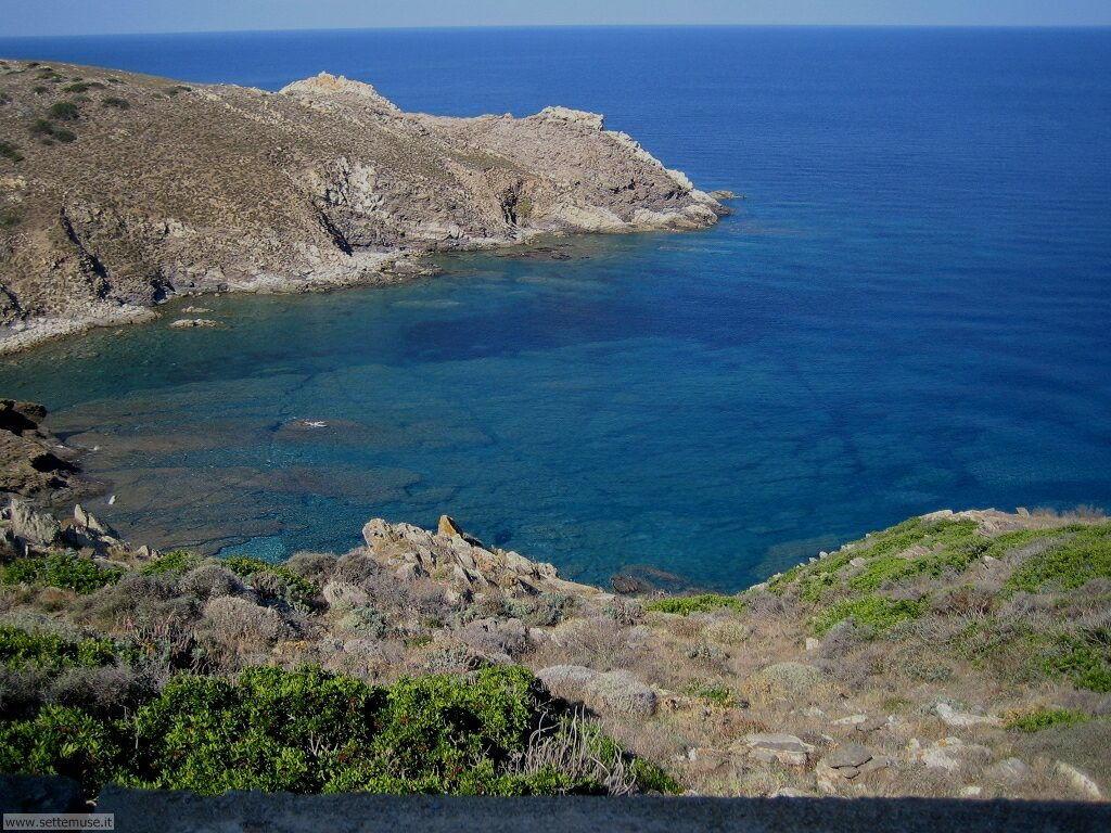 Isola Asinara 003