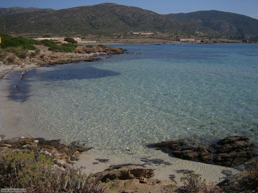 Isola Asinara 004