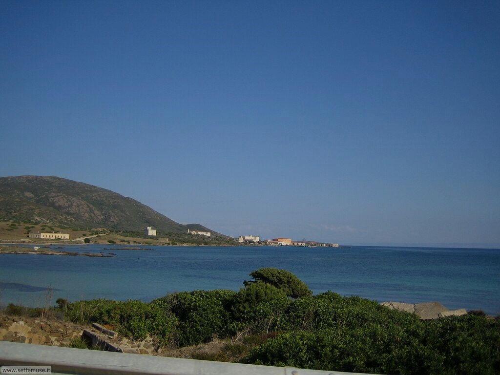Isola Asinara 007