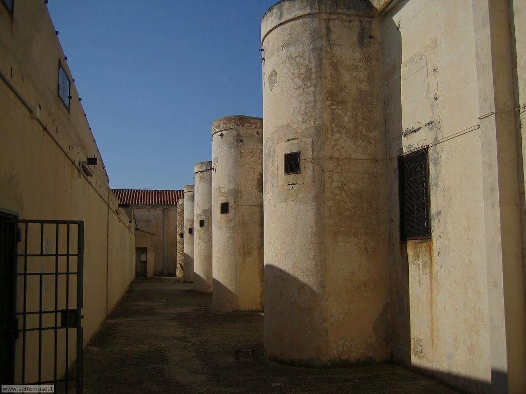Isola Asinara 008