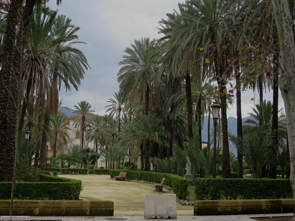 Palermo città pagina 5  169
