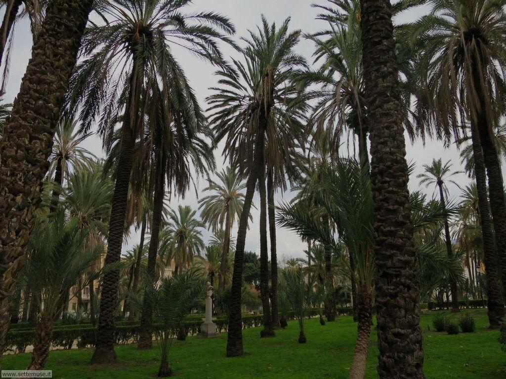 Palermo città pagina 5  186