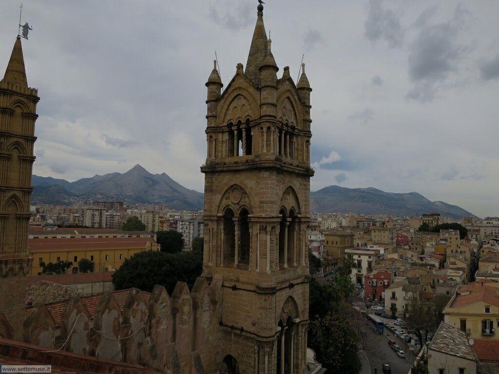 Palermo città pagina 6 215