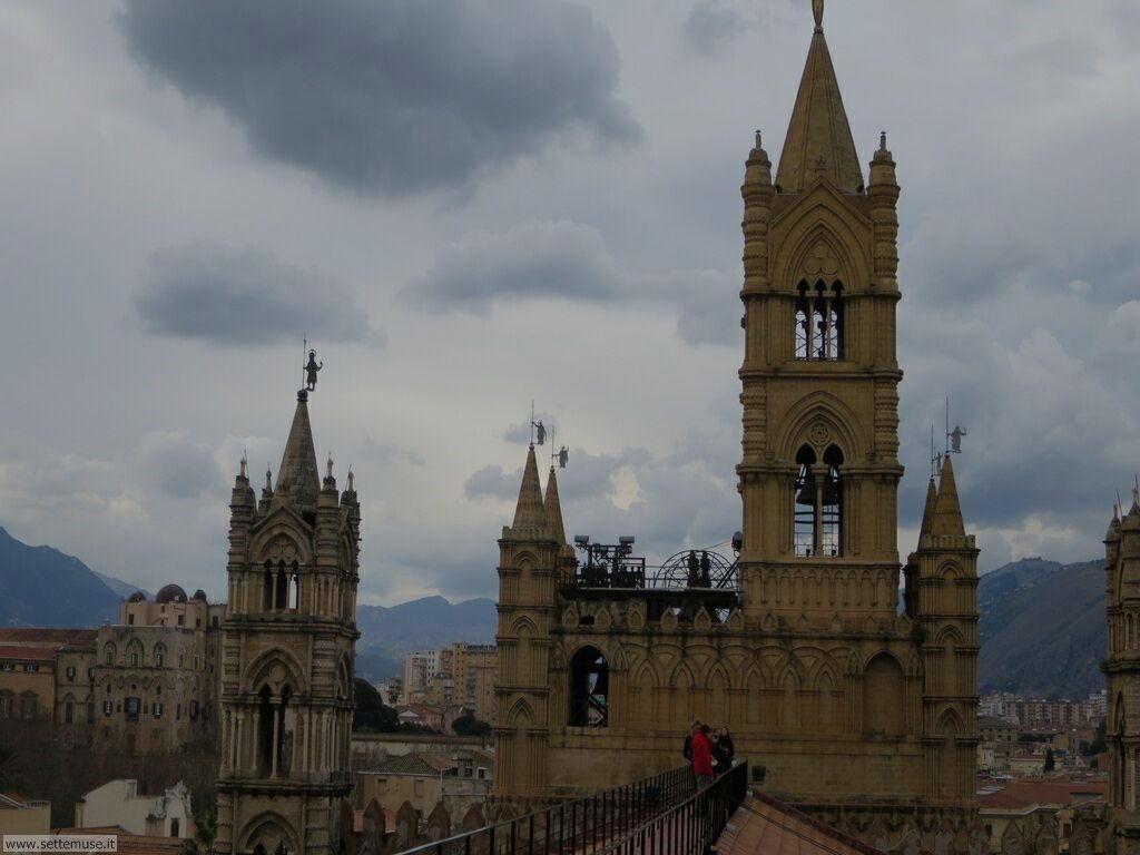 Palermo città pagina 6 216