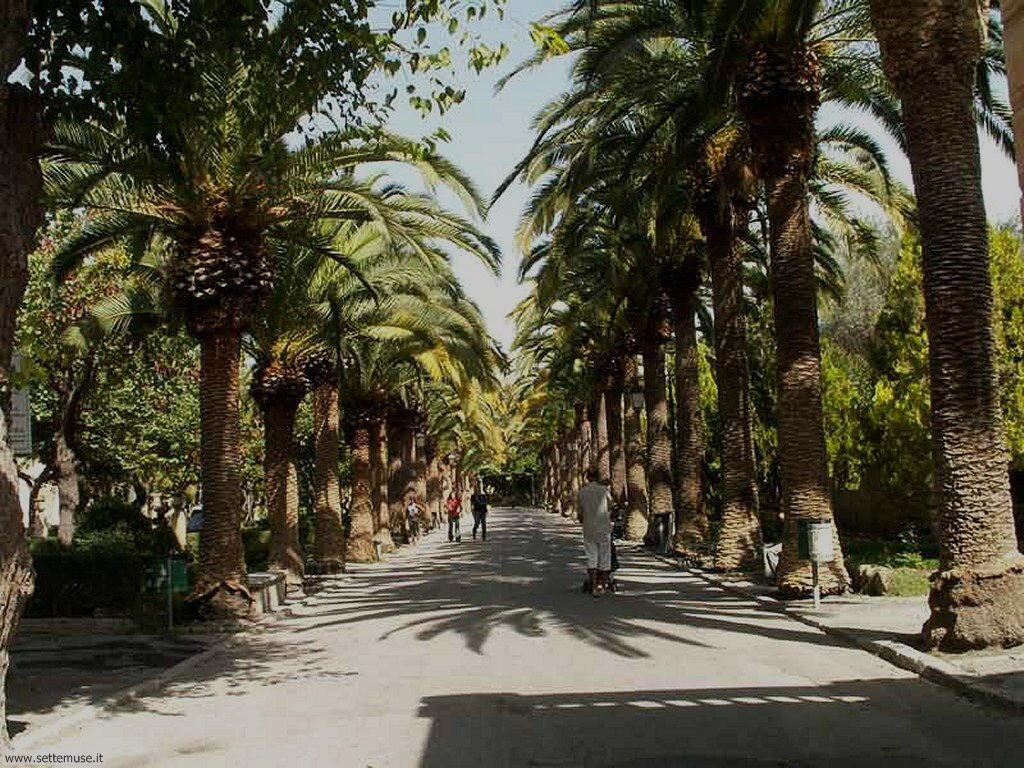 ragusa_012_giardini