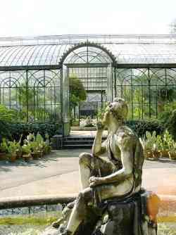 Palermo - Orto Botanico