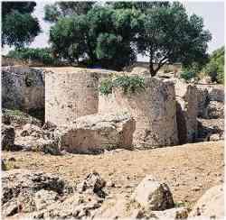 Selinunte - Cave di Cusa