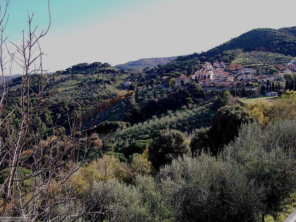 foto_castagneto_carducci_008