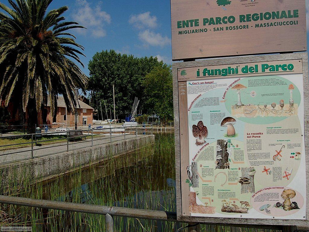 LU_torre_del_lago_puccini/LU_torre_del_lago_045.jpg