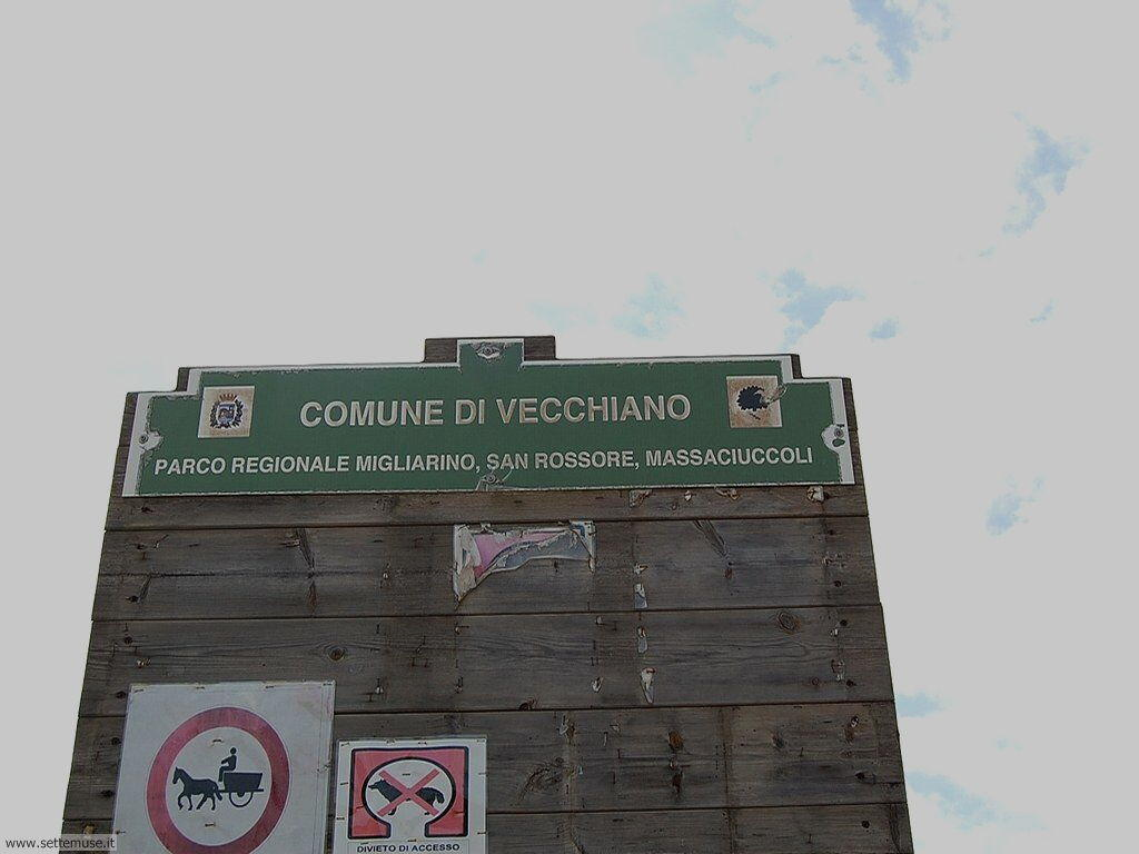 PI_marina_di_vecchiano/PI_marina_di_vecchiano_054.jpg