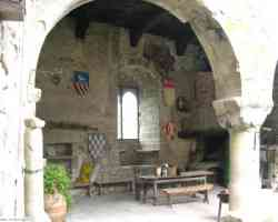 Castel san Niccolò - Il Castello