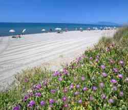 Capalbio Spiaggia