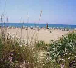 Grosseto - Le Dune