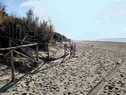 Marina di Bibbona - Foto sulle dune in inverno