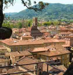Lucca dalla torre Guinigi