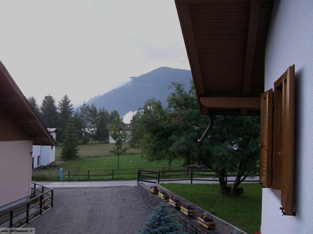 TN_bellamonte/bellamonte_203.jpg