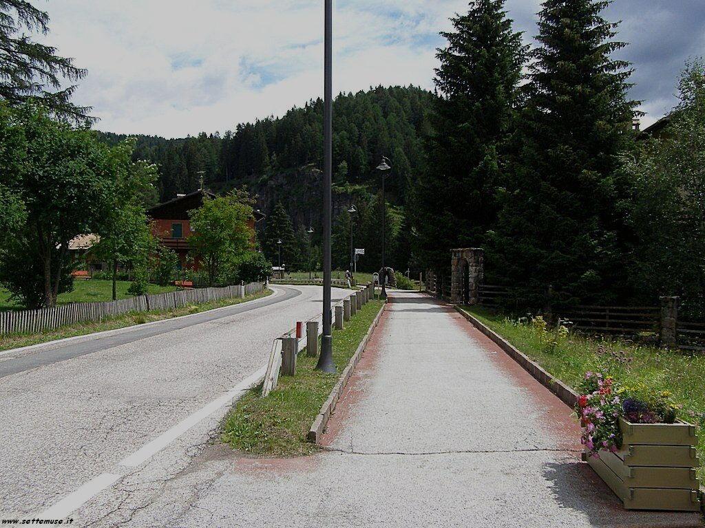 TN_bellamonte/bellamonte_218.jpg