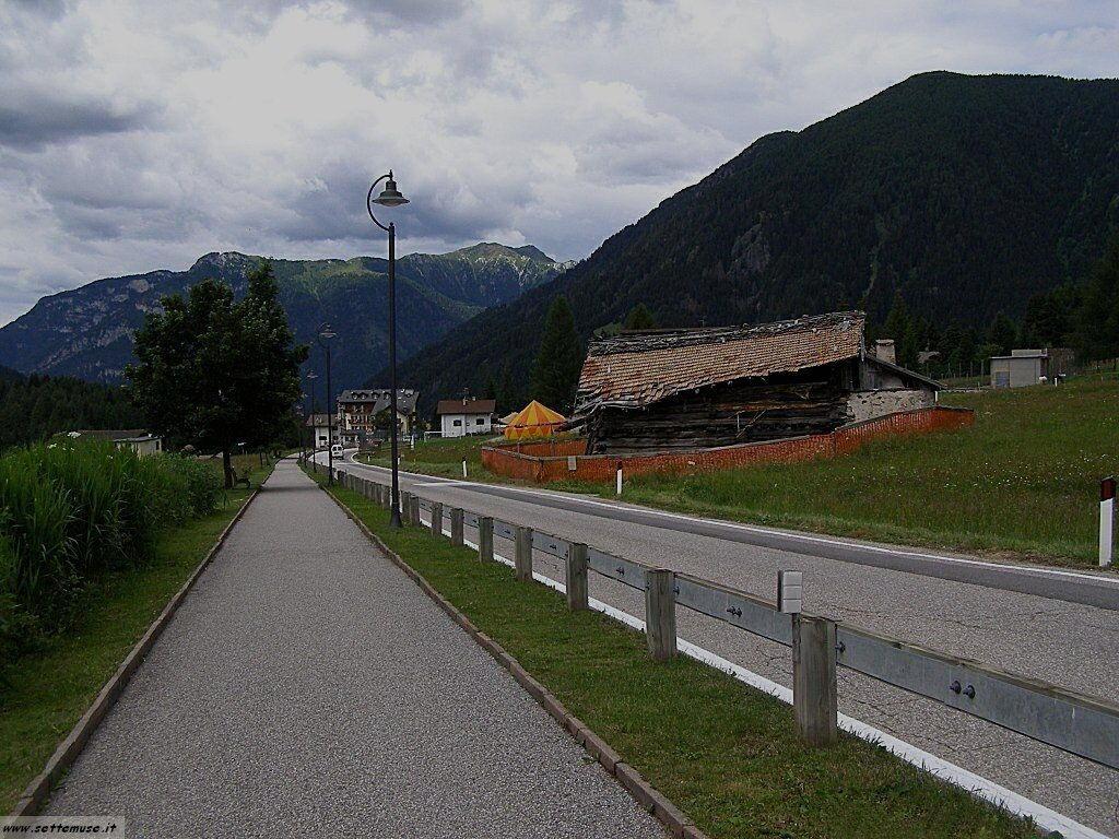 TN_bellamonte/bellamonte_223.jpg