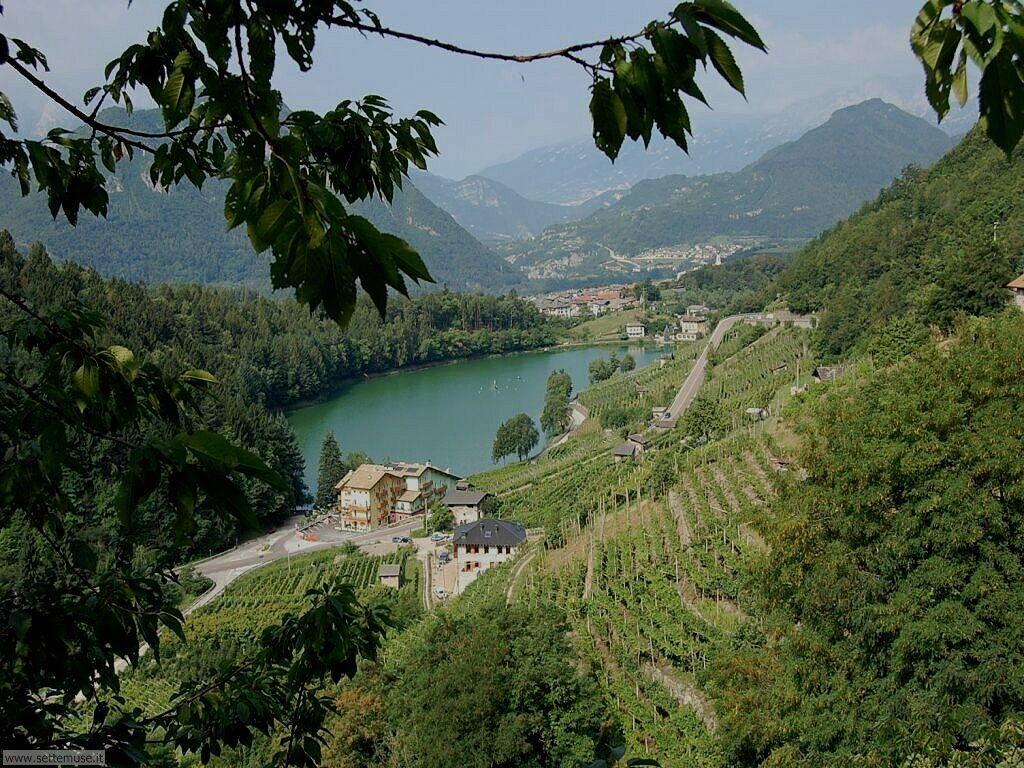 Biotopo lago Costa (Brazzaniga - Trento)