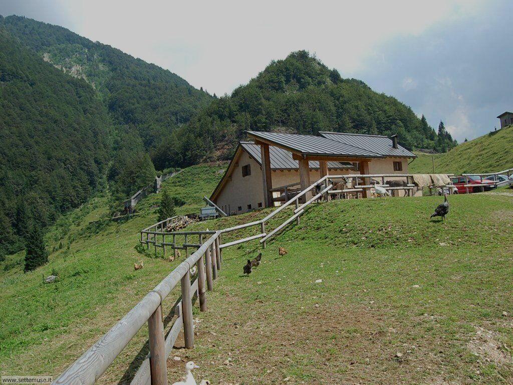 Malghe e montagne nei dintorni di Rovereto