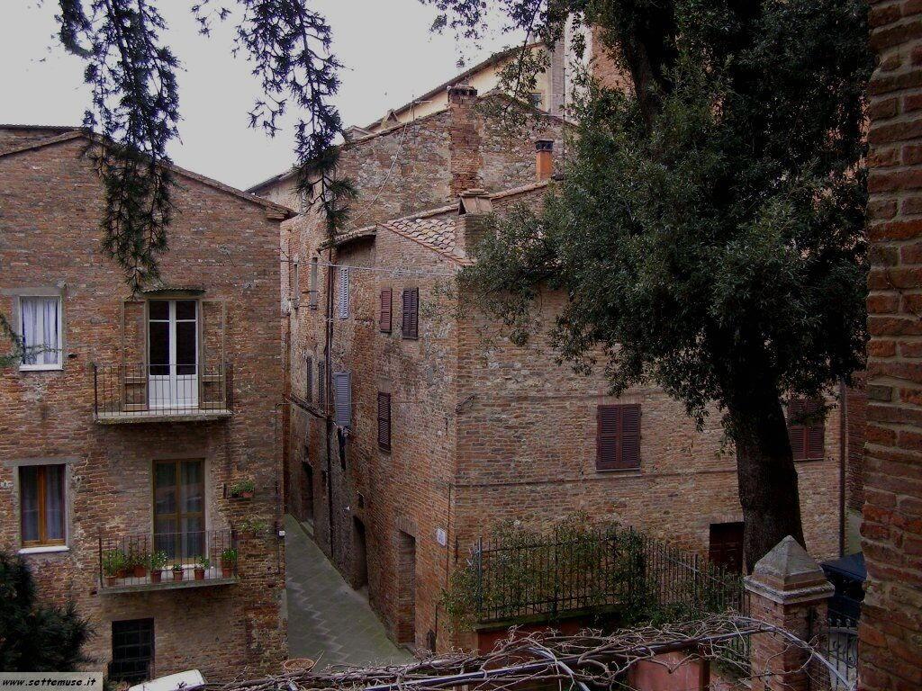 PG_citta_della_pieve/foto_citta_della_pieve_010.jpg