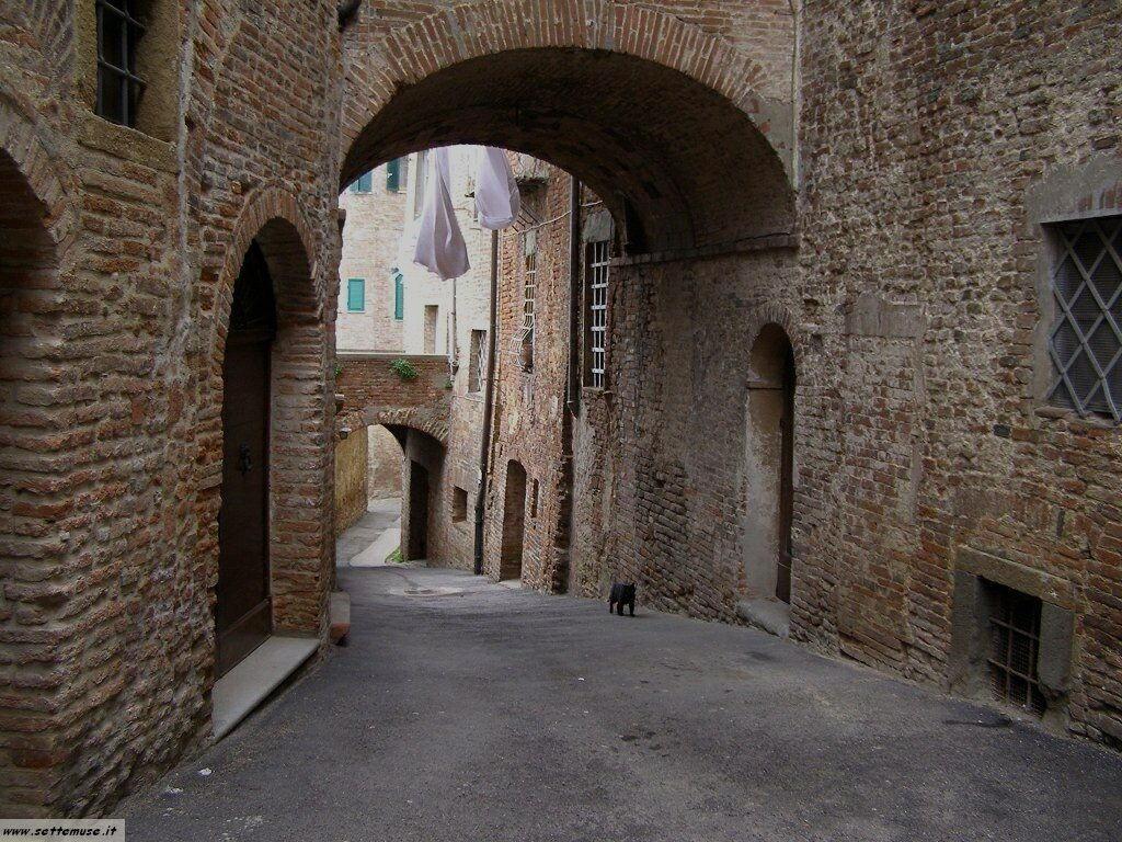 PG_citta_della_pieve/foto_citta_della_pieve_018.jpg