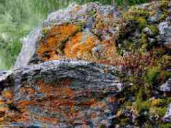Lillaz - Parco Geologico