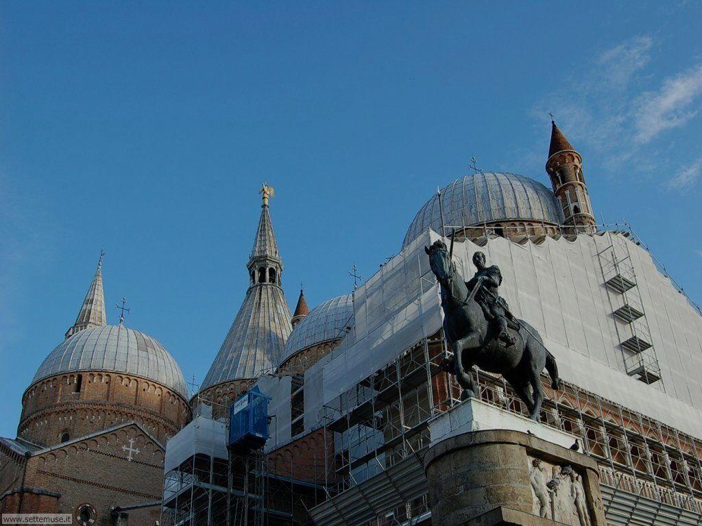 Basilica di sant'Antonio 016