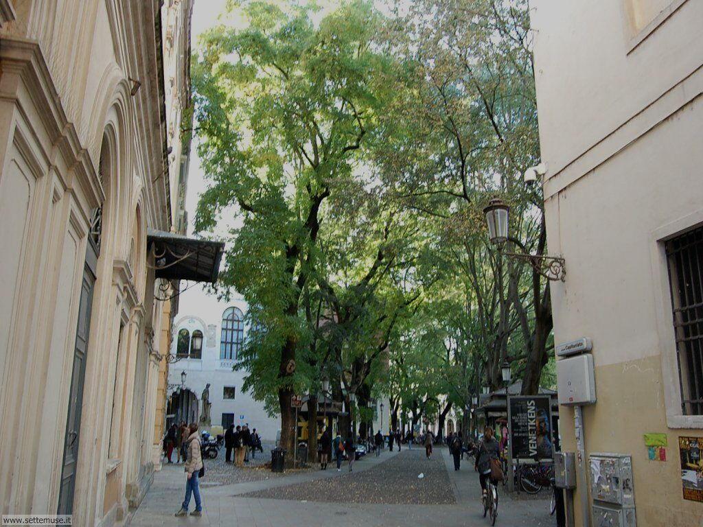 Padova 055