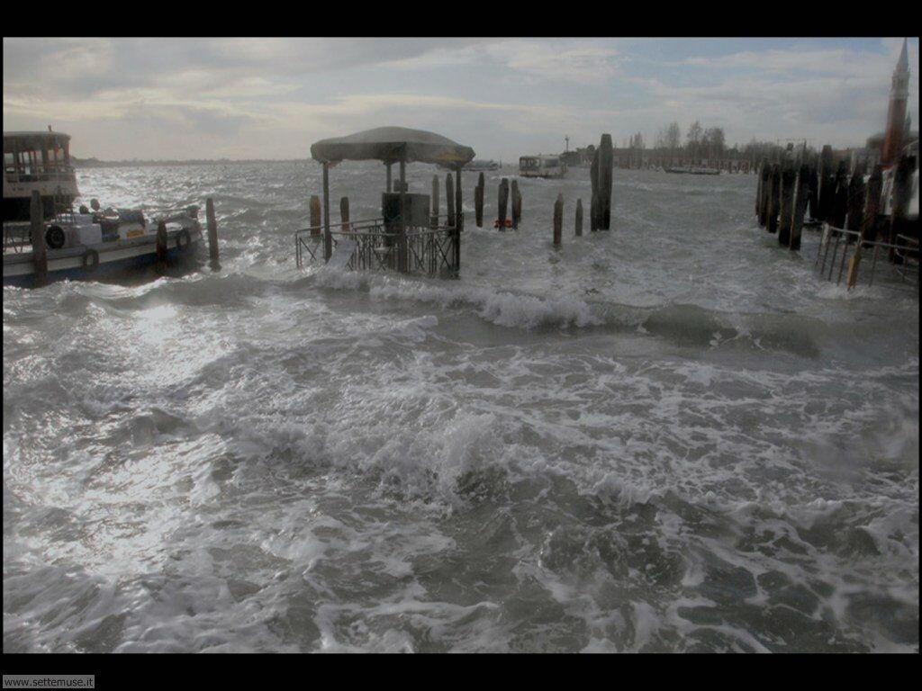 venezia acqua alta 011
