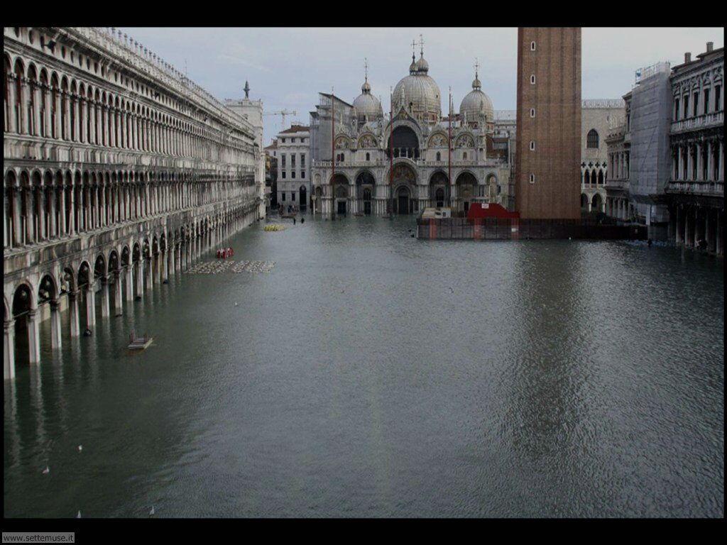 venezia acqua alta 017