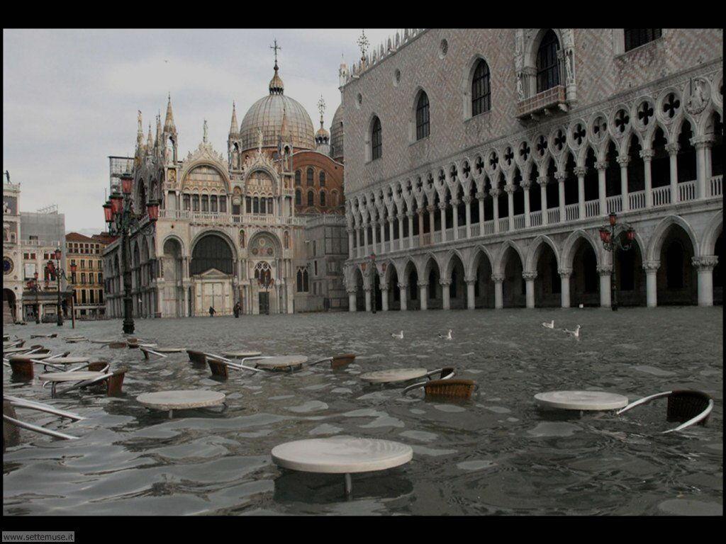 venezia acqua alta 021
