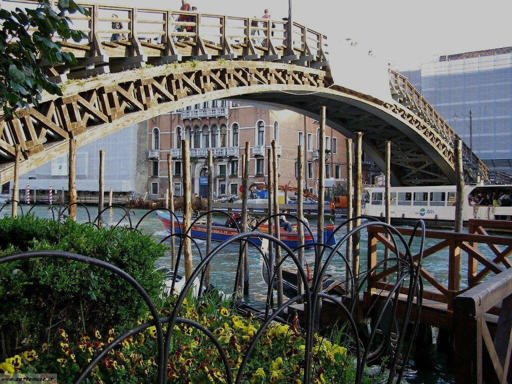 Ponte dell'Accademia 091