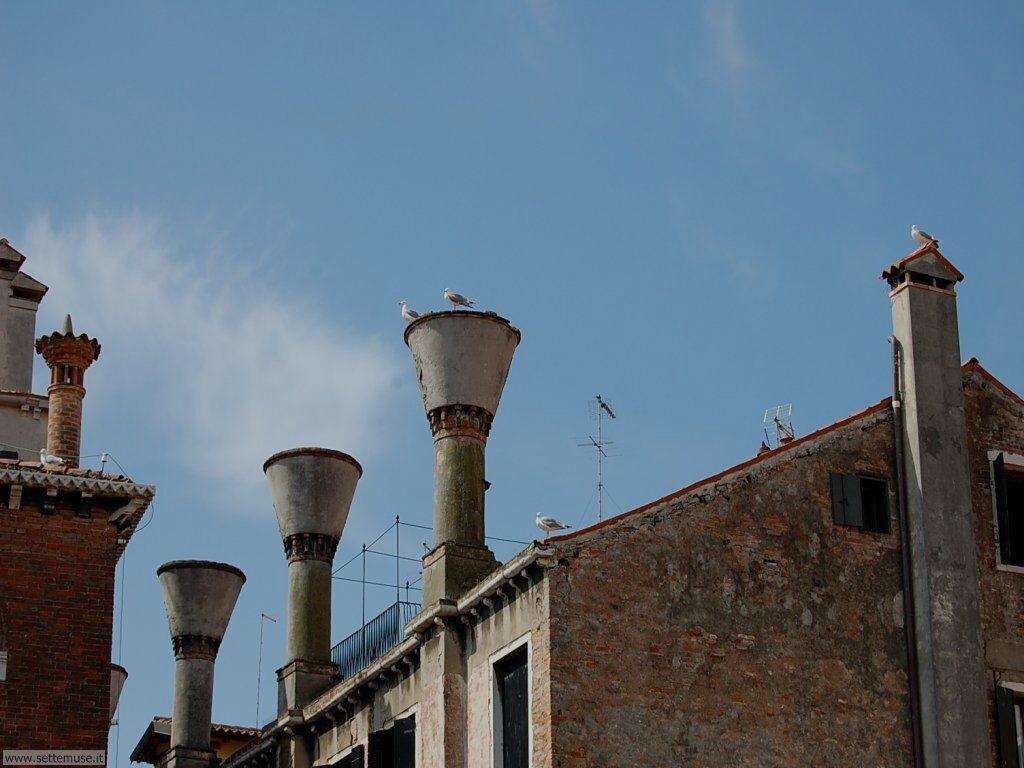 Tipici camini veneziani 729