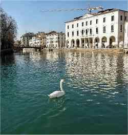 Treviso - Riviera Garibaldi