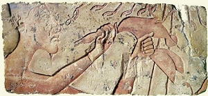 Akhenaton offre un'anatra ad Aton-Ra