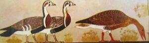 Oche dalla Mastaba di Itet Meydum, Pittura Antico Regno, Museo Egizio del Cairo