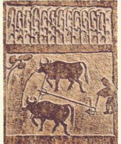 Mattonelle in terracotta